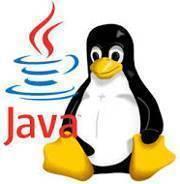 java linux